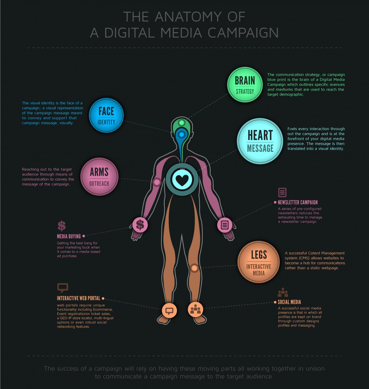 The Anatomy of a Digital Media Campaign